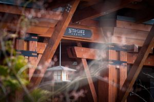 Kelcey-Joe-Nita-Lake-Lodge-whistler-wedding-1.jpg